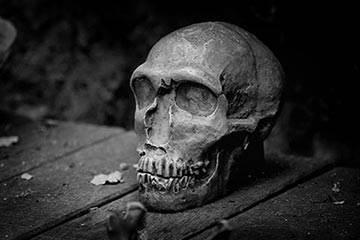 Soñar con Cadáver