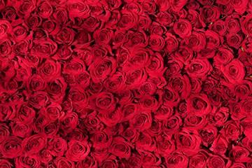 Soñar con Rojo